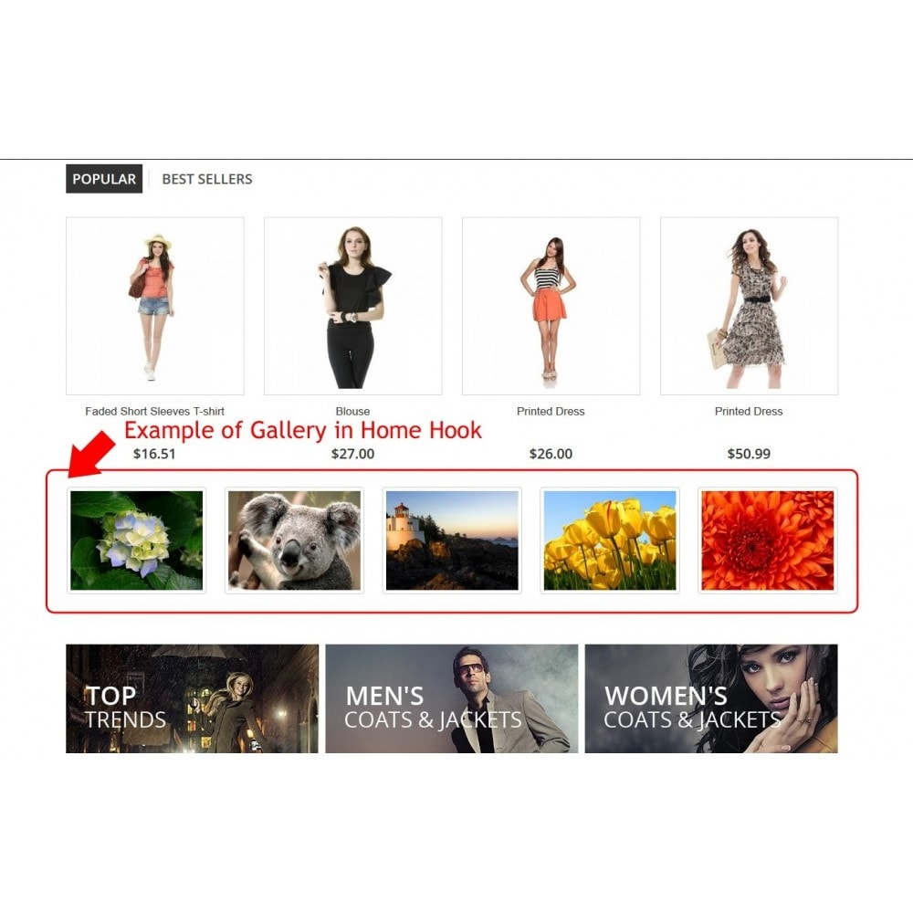 module - Slider & Gallerie - Gallery Slider Everywhere - 9