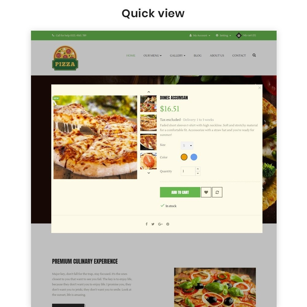 theme - Food & Restaurant - Ap Pizza - 6
