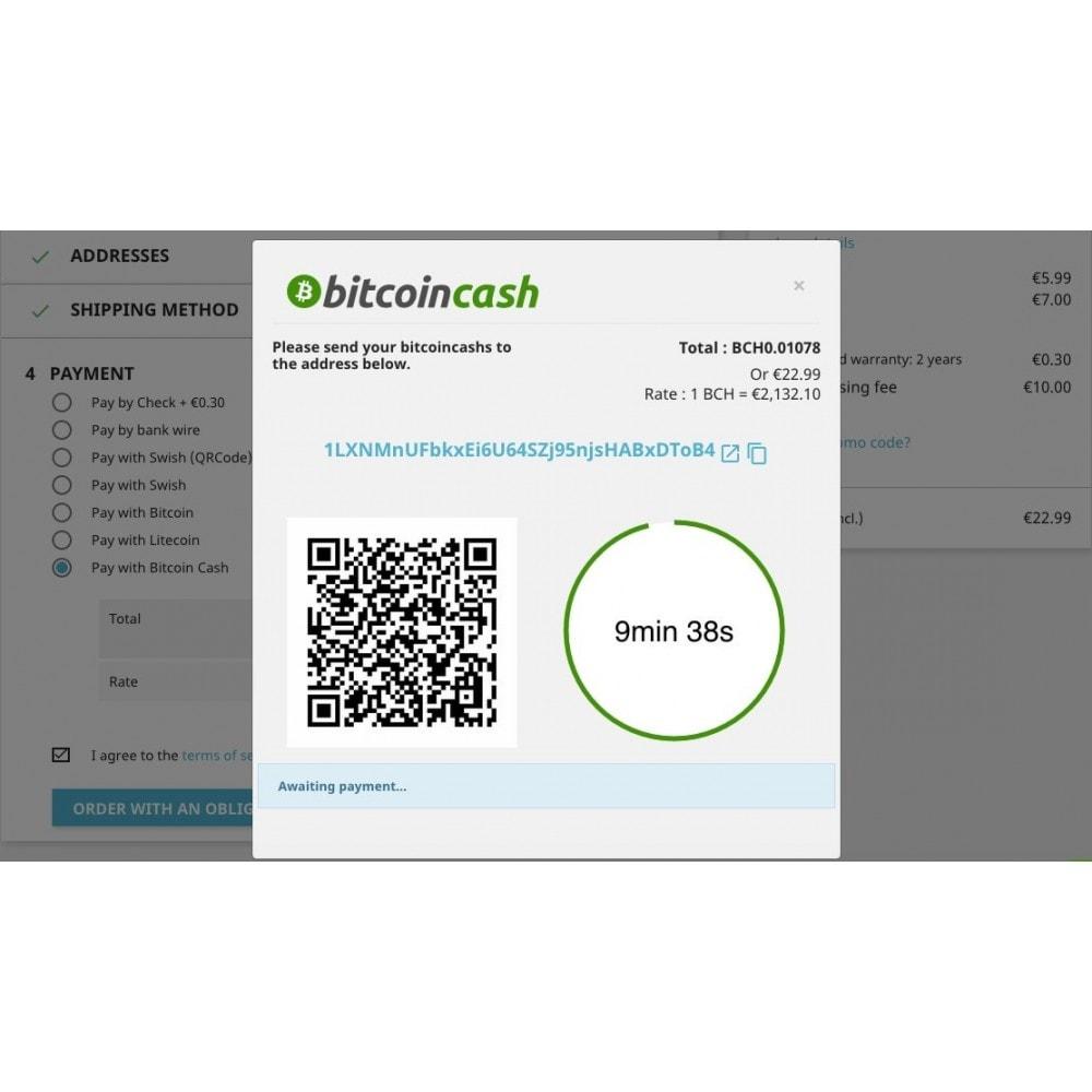 module - Autres moyens de paiement - Bitcoin Cash - Accept bitcoin directly into your wallet - 2