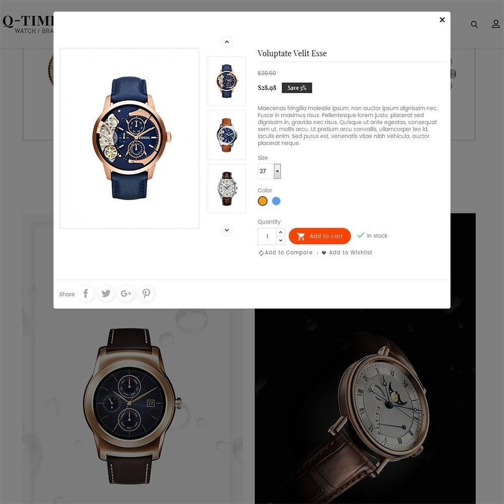 theme - Jewelry & Accessories - Times Watch - 8