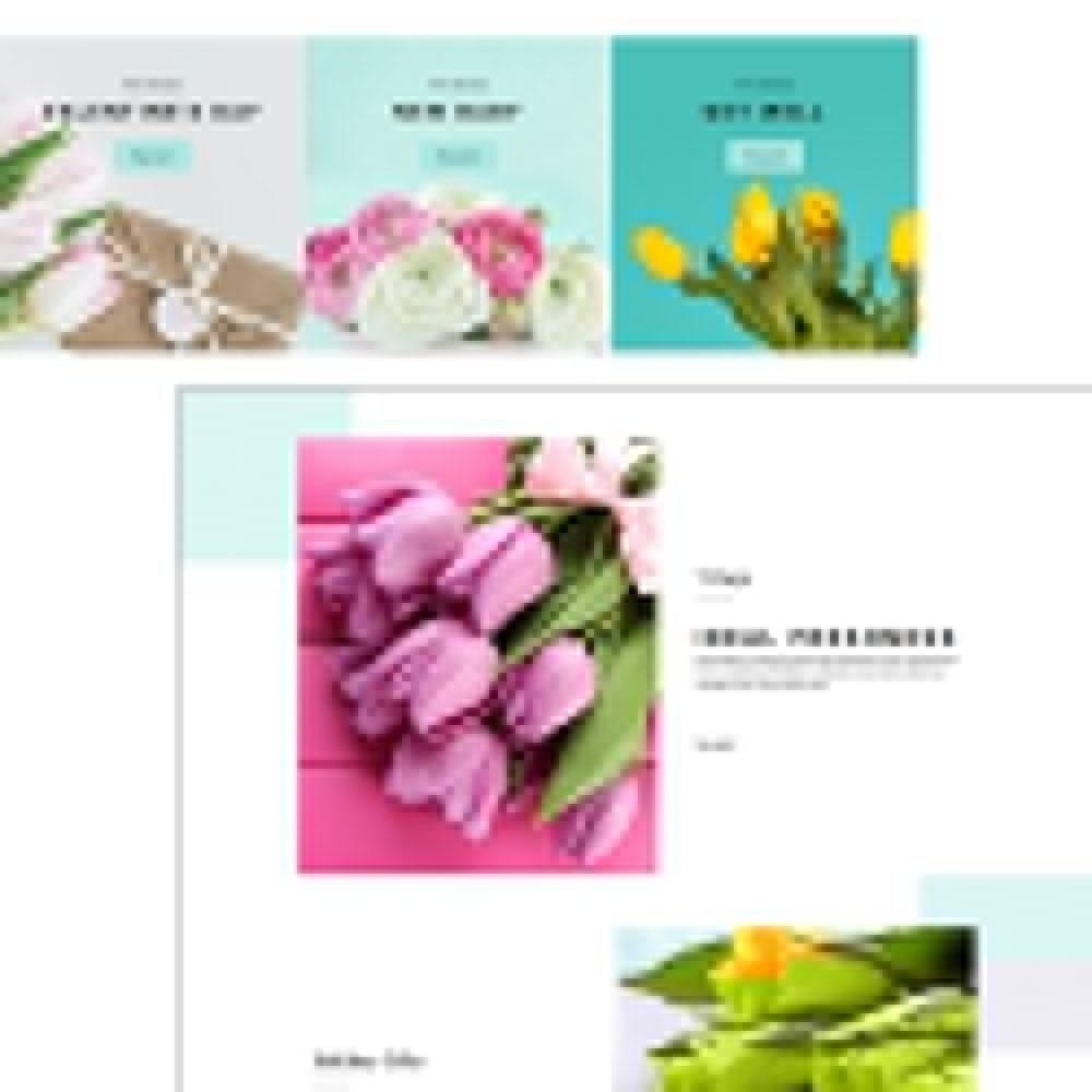 theme - Gifts, Flowers & Celebrations - Flower - Dreamy Flora - 6