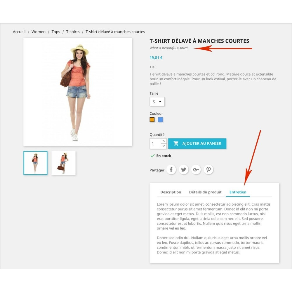 module - Information supplémentaire & Onglet produit - Champs & onglets supplémentaires fiche produit - 1