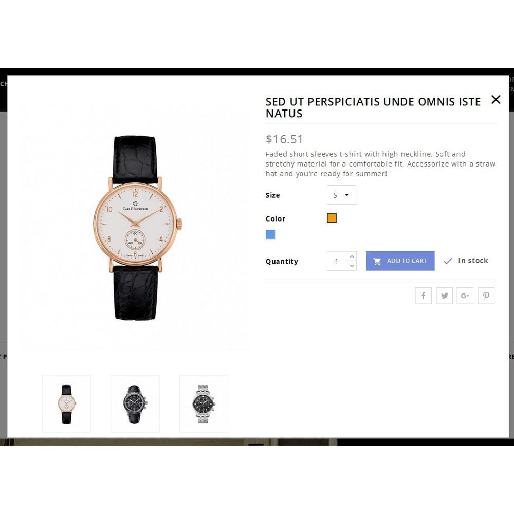 theme - Bellezza & Gioielli - Timex Watch Store - 7