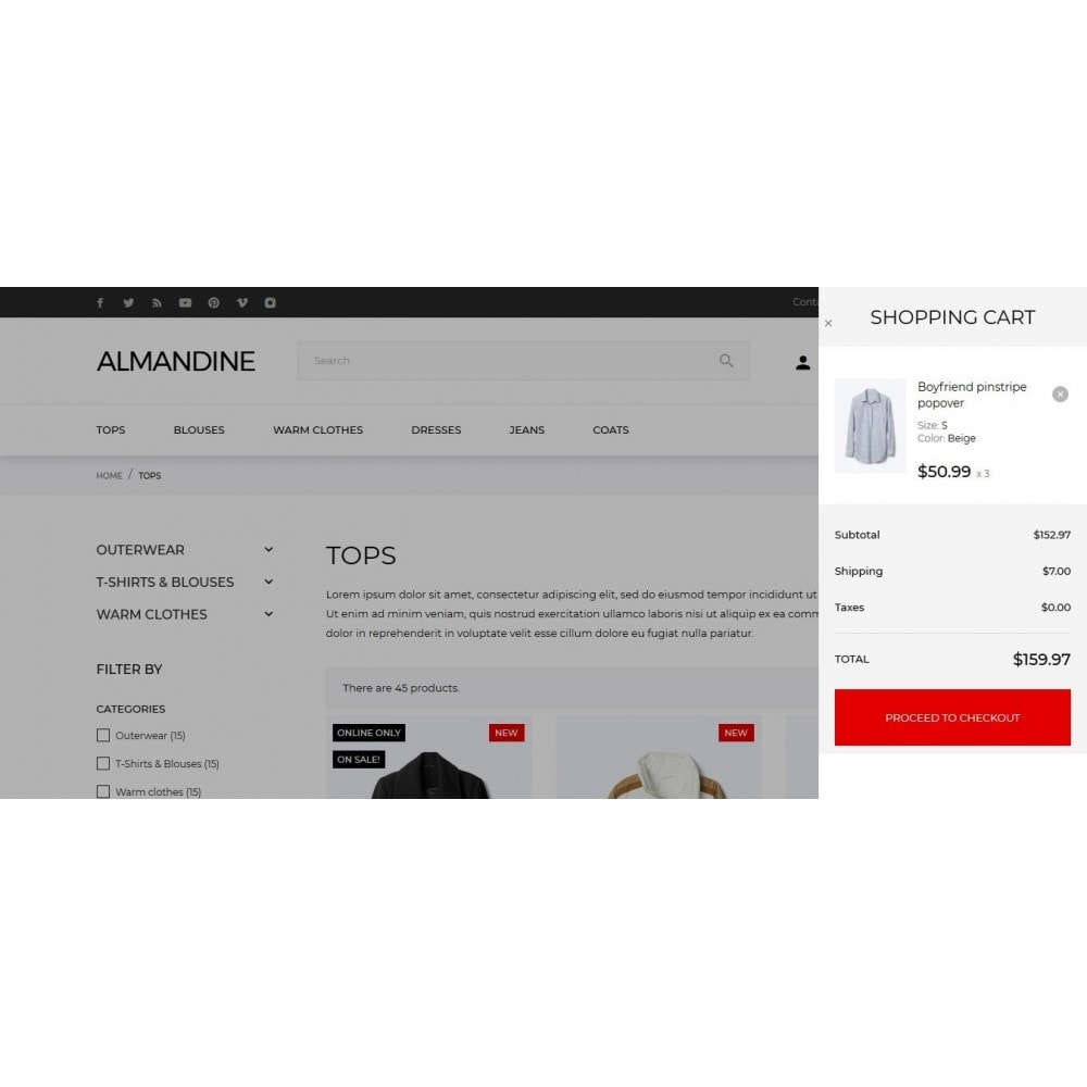 theme - Moda & Calzature - Almandine Fashion Store - 3