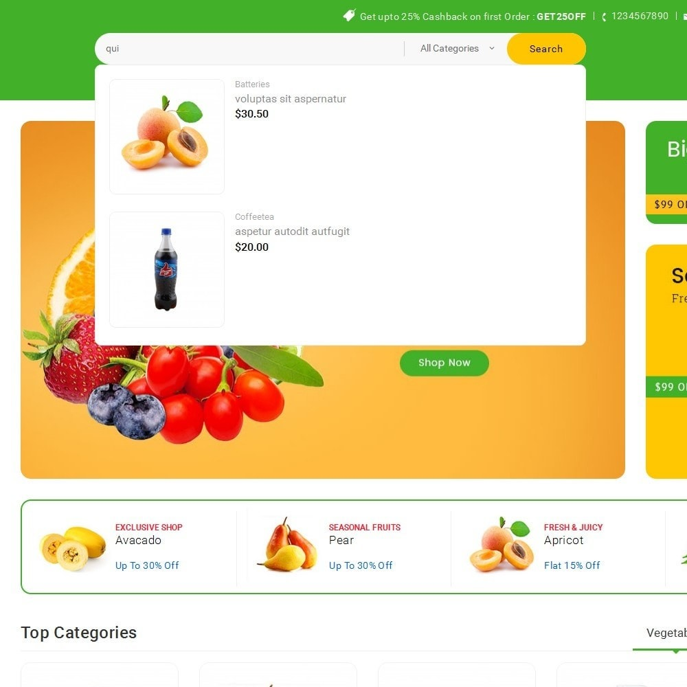 theme - Alimentation & Restauration - Mega Shoppe Grocery - 10