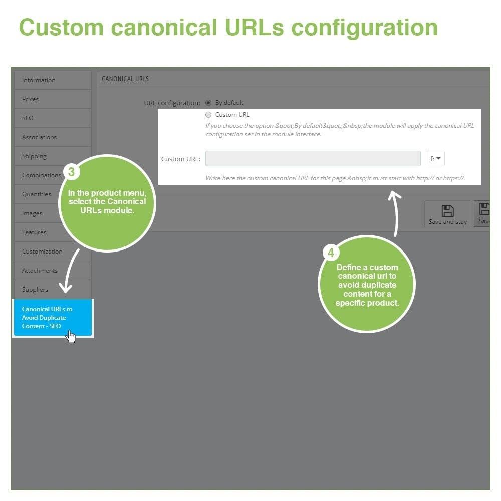 module - URL & Omleidingen - Canonical SEO URLs to Avoid Duplicate Content - 11