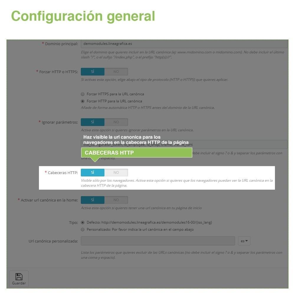 module - URL y Redirecciones - Canonical SEO URLs para Evitar Contenido Duplicado - 5