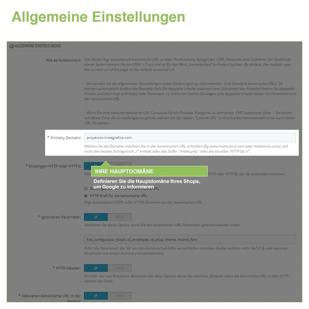 bundle - URL & Redirects - SEO - Verbessern Sie Ihre Website Indexierung - 3-Modul - 2