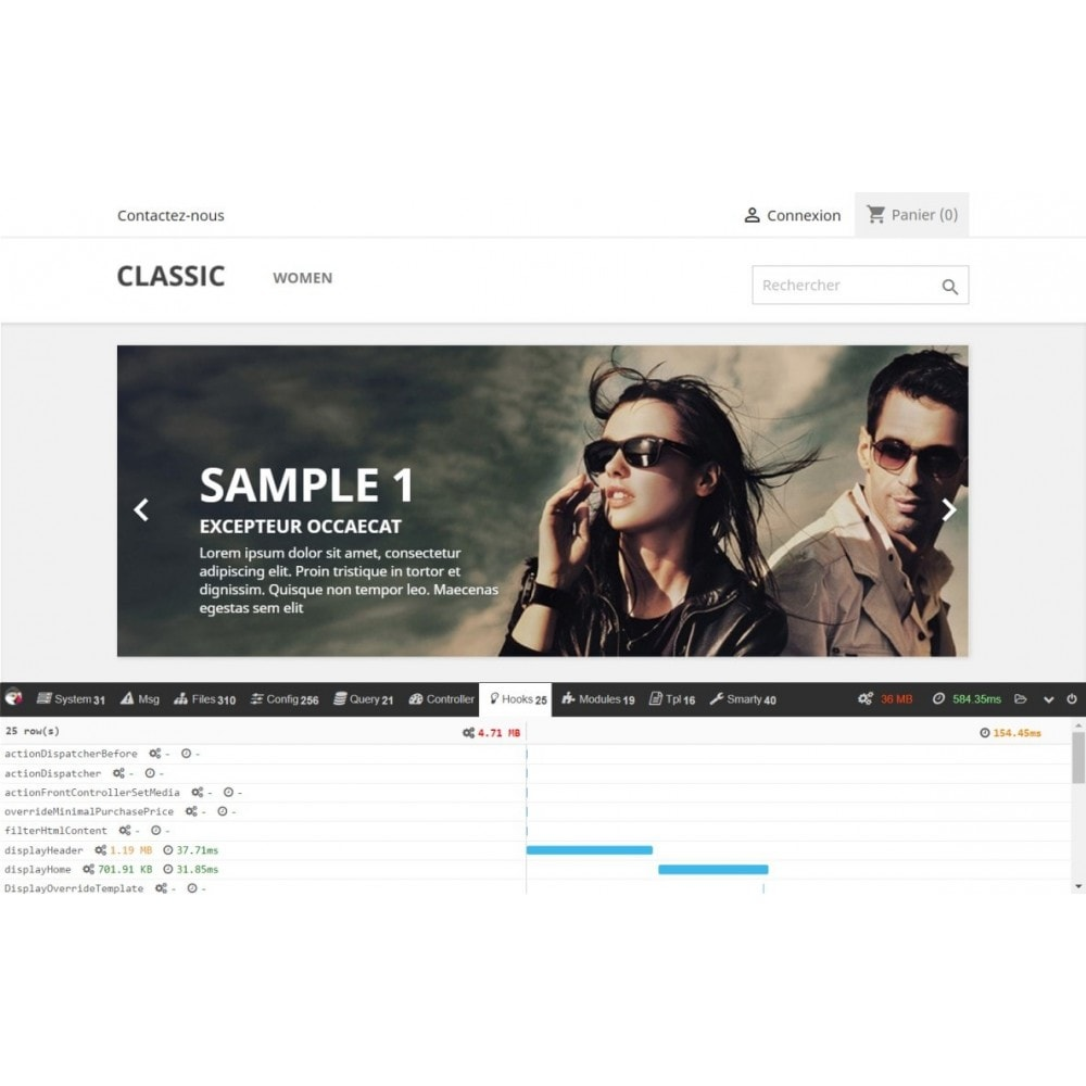 module - Rendimiento del sitio web - Debug toolbar - 2