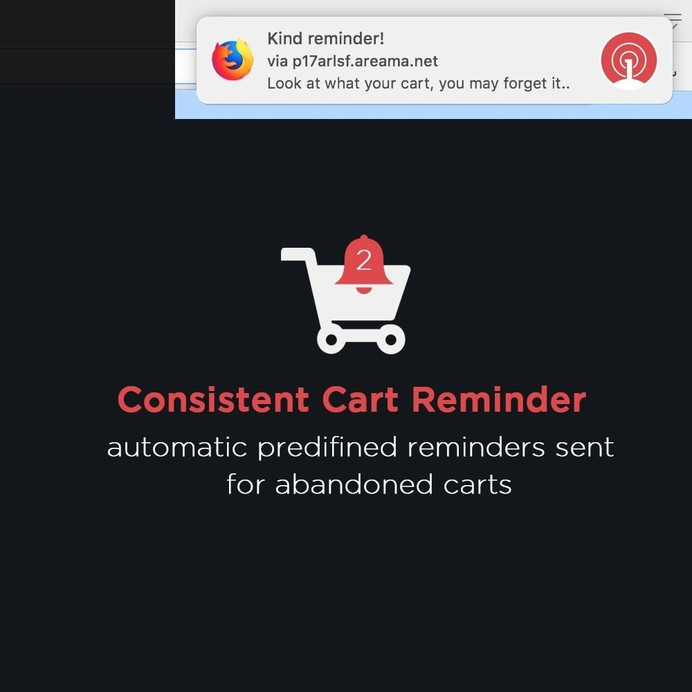 module - Email & Notifiche - OneSignal - Browser Push Notifications + Cart Reminder - 5