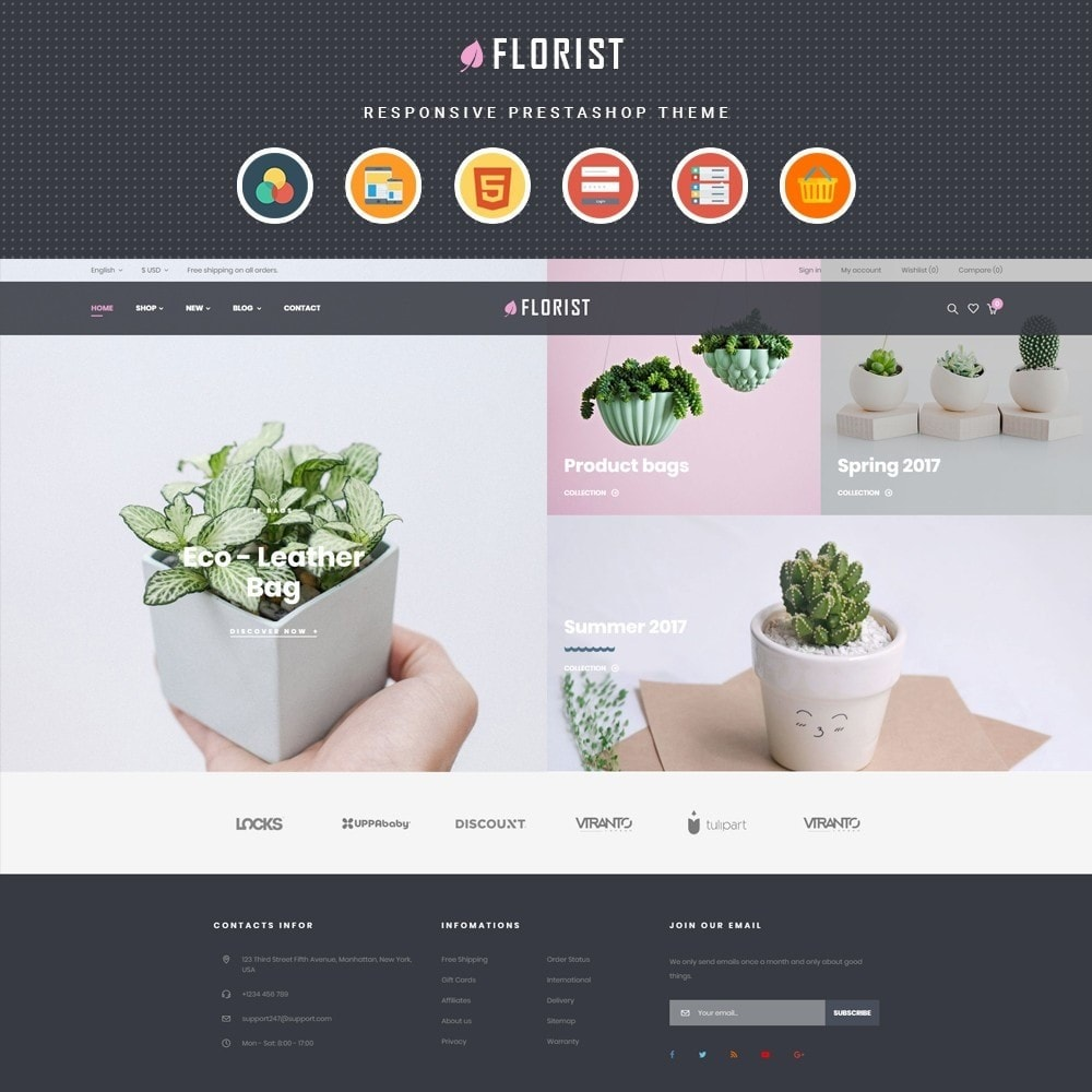 theme - Regali, Fiori & Feste - Leo Florist - Bonsai & Plants - 1
