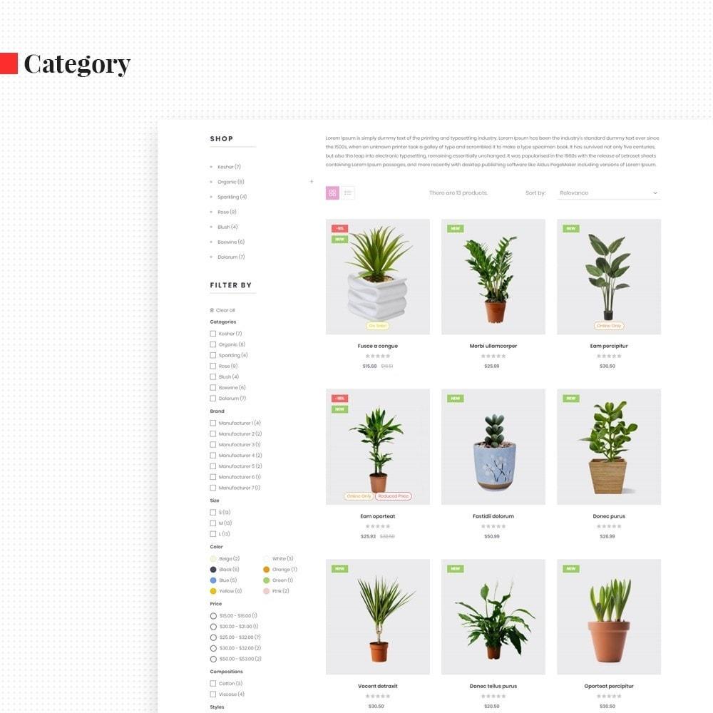 theme - Regalos, Flores y Celebraciones - Leo Florist - Bonsai & Plants - 6