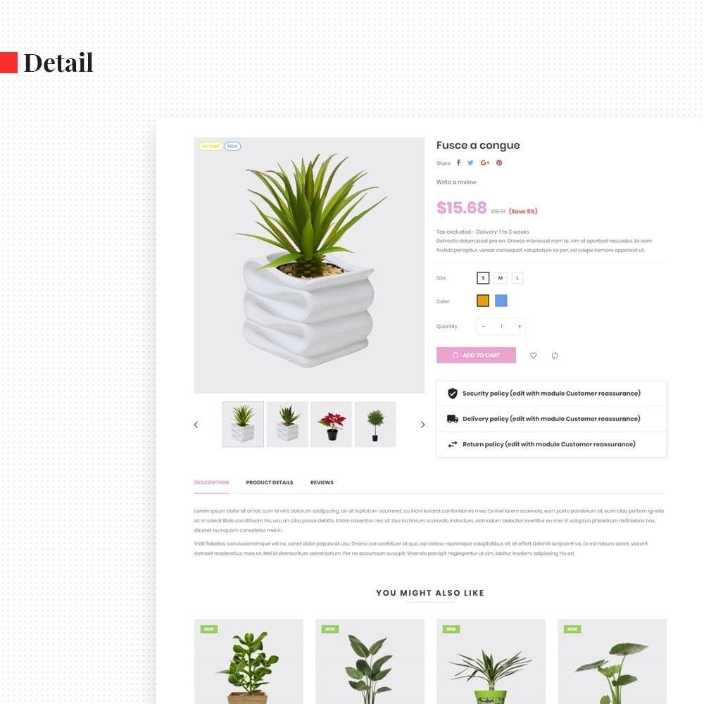 theme - Regali, Fiori & Feste - Leo Florist - Bonsai & Plants - 7